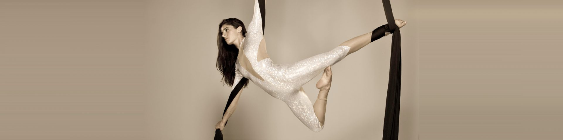 Exchange Aerial Silk