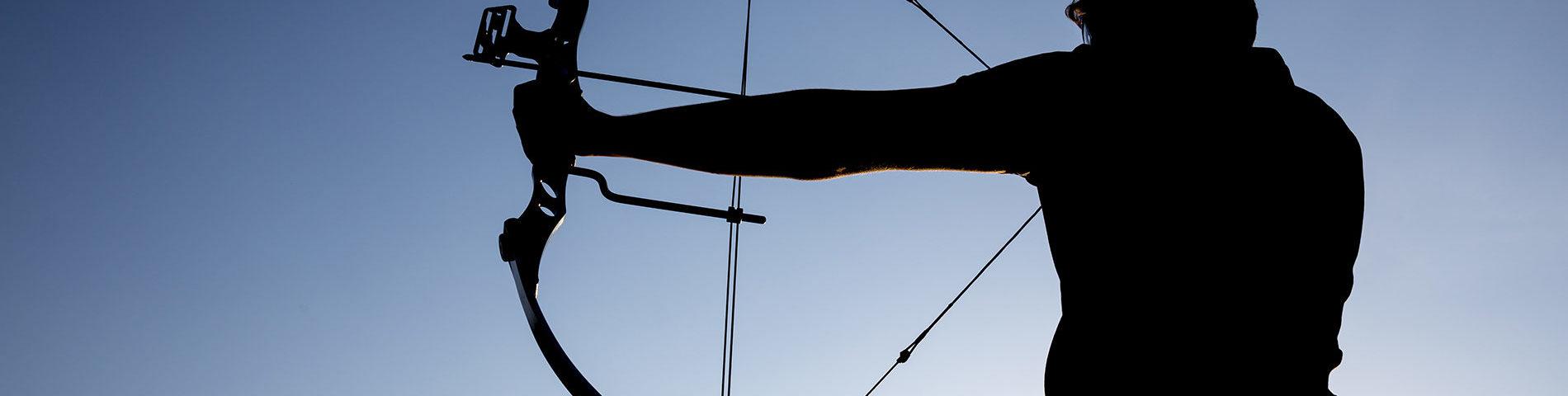 Exchange Archery with Da Vinci