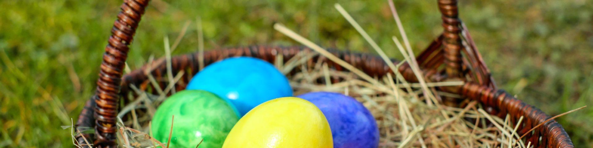 Easter egg orienteering hunt
